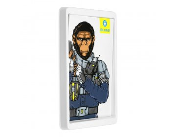 5D Mr. Monkey Armor Camera Glass do iPhone 12 Pro Max złoty